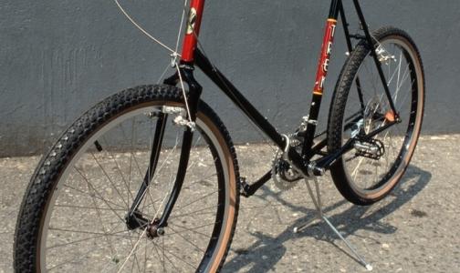 На велосипеде за здоровым сердцем