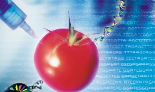 В детском питании ГМО быть не должно