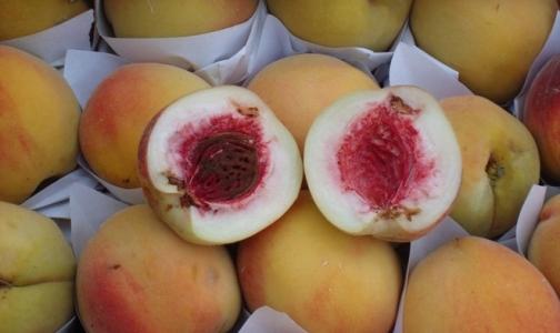 Испанские персики съели плодожорки
