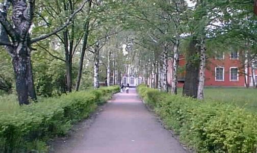 Минздрав превратил академии в университет