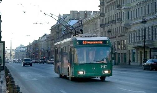 В Петербурге появятся 13 новых «социальных» маршрутов
