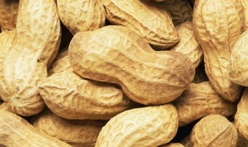 В Петербург может попасть арахис с повышенным содержанием кадмия