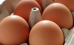 Празднуем Всемирный день яйца