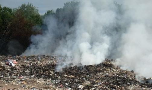Из-за пожара на свалке страдают астматики Московского района и Пушкина