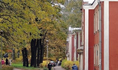 Больницу имени Петра Великого реставрируют с нарушениями