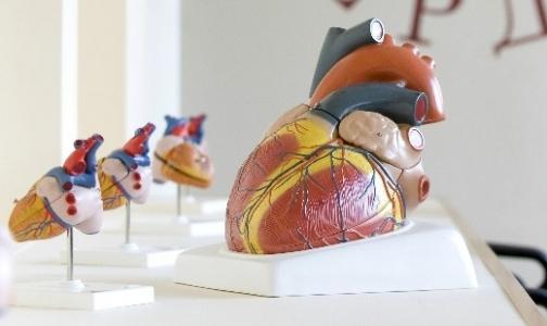 В Петербурге открылся Музей сердца