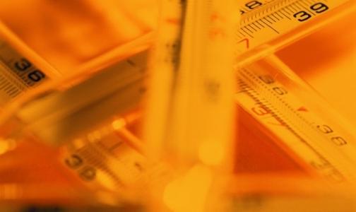Эпидемию гриппа можно ожидать через две недели