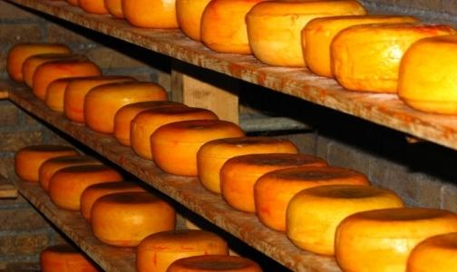 Россия может запретить ввоз украинского сыра