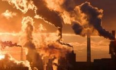 Экологи обнародовали рейтинг самых грязных районов Петербурга