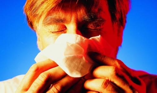 Чаще всего петербуржцы страдают от ОРВИ, кишечных инфекций и... вшей