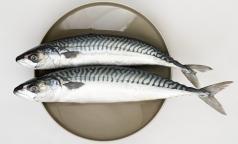 В какой рыбе больше всего Омега-3