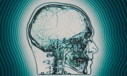 Ученые обнаружили новые нервные клетки мозга