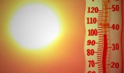 Петербургский врач рассказал, как пережить жару без вреда для здоровья
