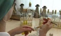 Какими геморрагическими лихорадками могут заболеть петербуржцы?