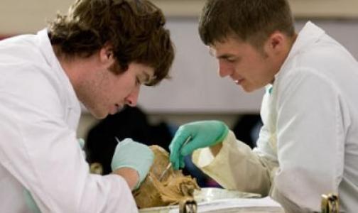 В медвузах Петербурга бесплатно начали учиться почти 2 тыс будущих врачей