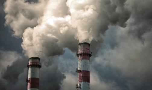 Депутат Закса: Завод по переработке медотходов нельзя строить в Красном Бору