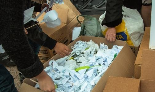 Акция «Белый цветок» собрала два миллиона рублей для тяжелобольных детей