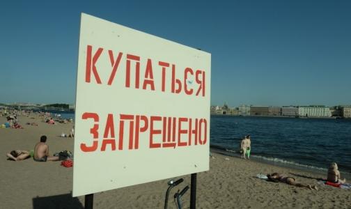 В Петербурге проверили качество воды в местах для купания