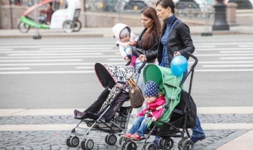 Глава Ленобласти: Петербург портит нам демографическую картину