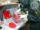 В Боткинской больнице подготовились на случай смерти пациента от лихорадки Эбола: Фоторепортаж
