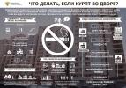 «Куда жаловаться, если курят в...» — инструкция от Минздрава: Фоторепортаж
