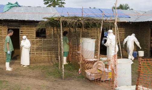 Российские эпидемиологи отправились в Гвинею для помощи в борьбе с лихорадкой Эбола