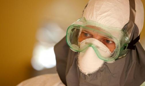 Кого госпитализировали в Петербурге с подозрением на лихорадку Эбола