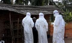 Роспотребнадзор отметил свои успехи в борьбе с лихорадкой Эбола в Гвинее