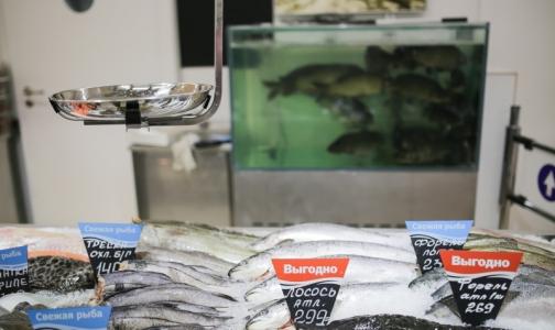 Роспотребнадзор остался недоволен рыбой на петербургских прилавках