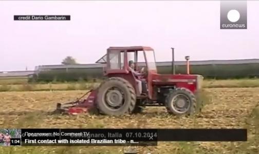 Итальянский художник изобразил вирус Эбола на поле с помощью трактора