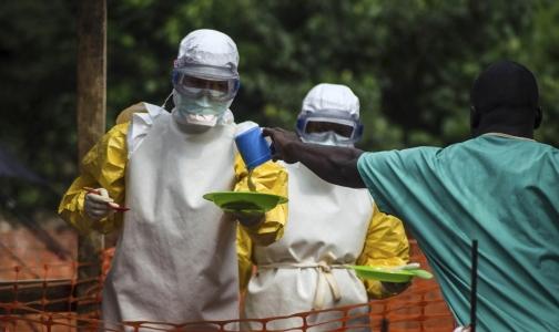 МИД сообщил, сколько денег Россия потратила на борьбу с лихорадкой Эбола