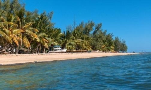 Роспотребнадзор советует россиянам не ездить на Мадагаскар из-за чумы