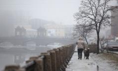 Вредные вещества в воздухе Петербурга могут спровоцировать обострение  болезней органов дыхания