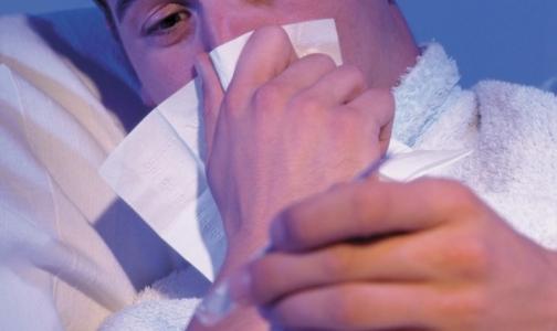В Петербурге выявляются случаи заболевания «свиным» гриппом