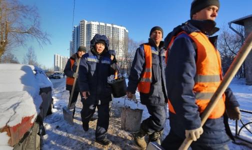 Около одного процента мигрантов приезжают в Петербург с опасными болезнями