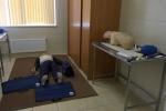 В Красногвардейском районе достроили новую подстанцию скорой помощи: Фоторепортаж