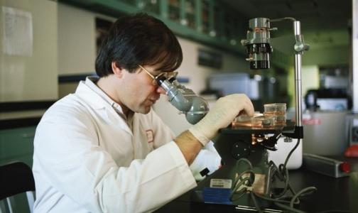 Депутаты Госдумы одобрили закон о биомедицинских продуктах в первом чтении