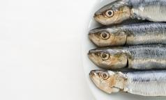 Роспотребнадзор предупреждает россиян об опасной рыбе с глистами