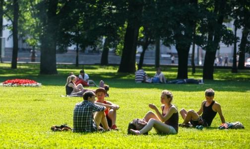 Петербуржцы в два раза чаще становятся жертвами клещей в черте города, чем в прошлом году