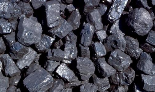 За похудение медсестре подарили 5 тонн угля
