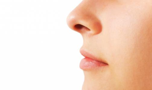 Нос человека назвали эволюционной случайностью