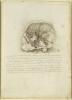 Британская организация Royal Collection Trust оцифровала анатомические рисунки Леонардо да Винчи: Фоторепортаж