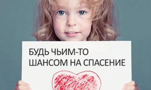 Молодых петербуржцев запишут в потенциальные доноры костного мозга