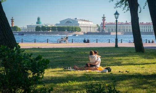 В четырех районах Петербурга можно не бояться встречи с клещом