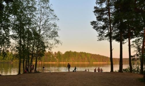Роспотребнадзор сообщил, в каких озерах и реках Ленобласти не стоит купаться