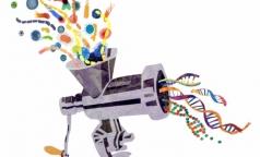 Петербургские ученые придумали новый способ изучения микроорганизмов в теле человека