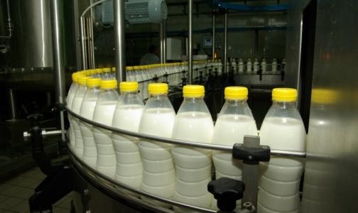 """В Россельхознадзоре назвали основные способы фальсификации """"молочки"""""""
