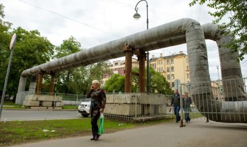 Почвы Петербурга загрязнены свинцом и кадмием