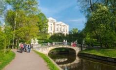 Десятки петербуржцев пострадали от клещей в Павловском парке
