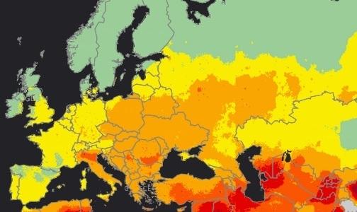 ВОЗ: Только 8% населения планеты дышит чистым воздухом